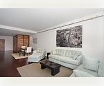 Downtown. Luxury Bldg. One Bedroom - High Ceilings. Stunning River & City Views