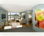 42nd Floor Penthouse - 1 Bedroom Apartment for Rent - Long Island City&#39;s Newest Waterfront High Rise - No Broker Fee - LIC Luxury Living